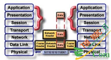Các thành phần của mạng máy tính 27