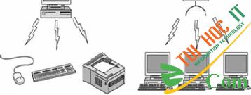 Các thành phần của mạng máy tính 21