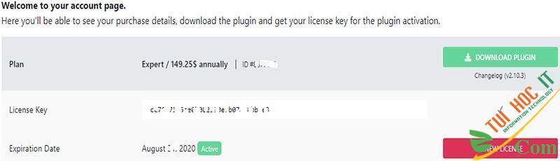 Share plugin Elementor Pro v3.0.3 WordPress update liên tục 2
